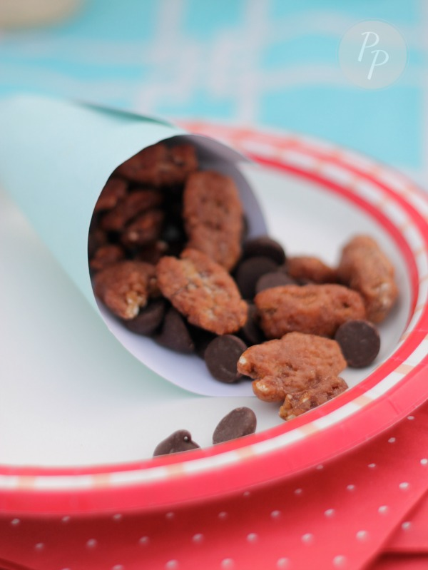 Tybee Picnic - Candied Pecans