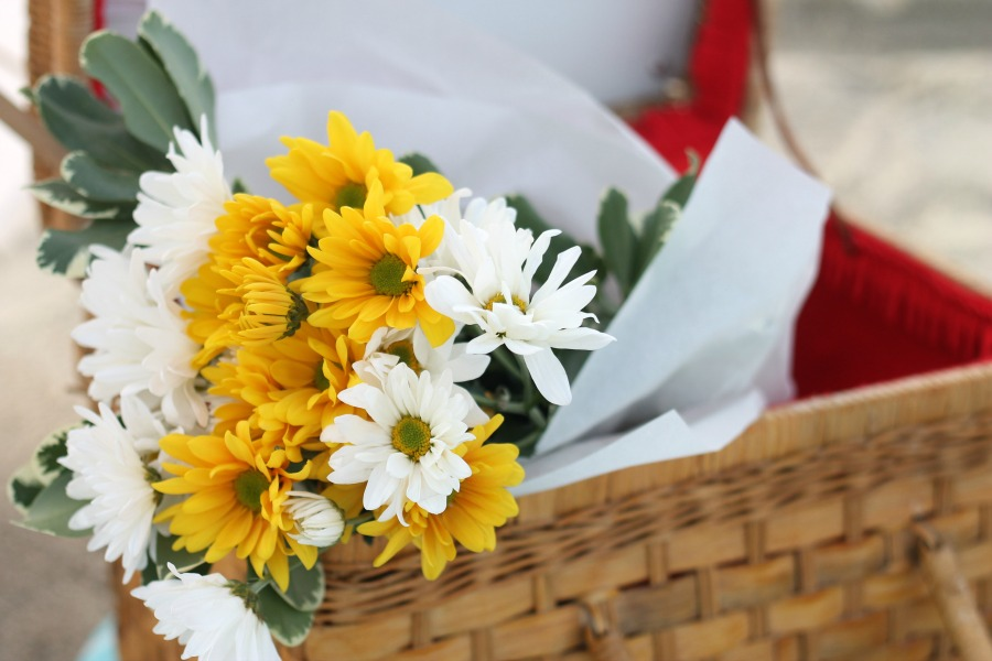 Tybee Picnic - Flowers
