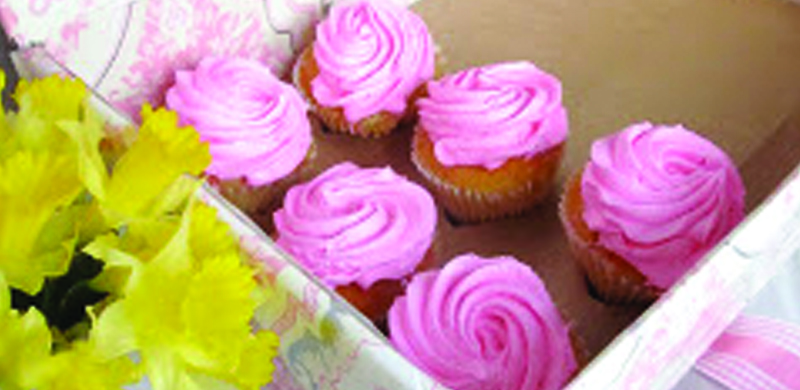 P4P-CoverPhotos_0088_89-CupcakeCarrier