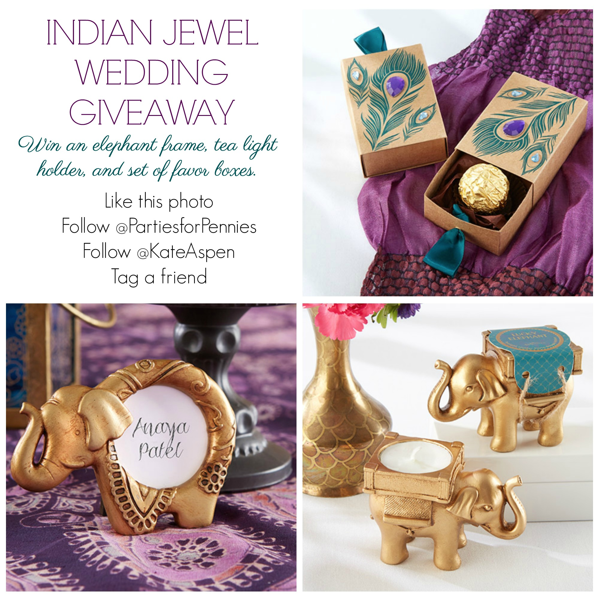 Indian Wedding Instagram Giveaway Info