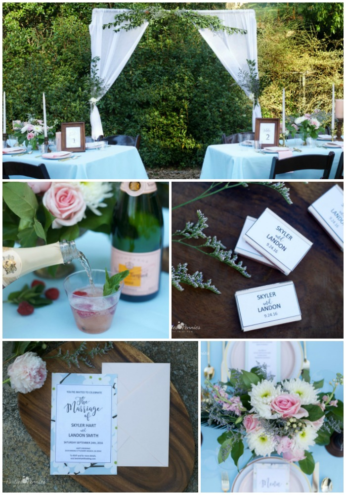 How to Plan a Backyard Wedding for under $5,000 | PartiesforPennies.com | Backdrop, Tables, Reception, Blue, Pink