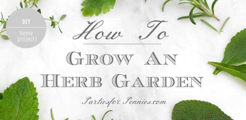 How to Plant An Herb Garden | PartiesforPennies.com | #garden #grow #herbrecipes #tips